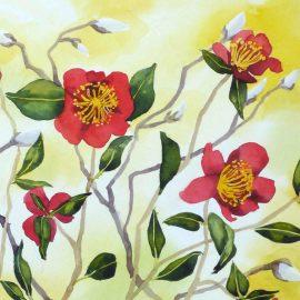 Camellia sasanquawater color