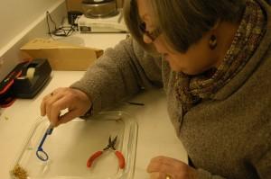 Examining Astragalus sinuatus seeds