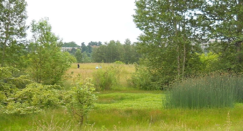 Union Bay Natural Area University Of Washington Botanic