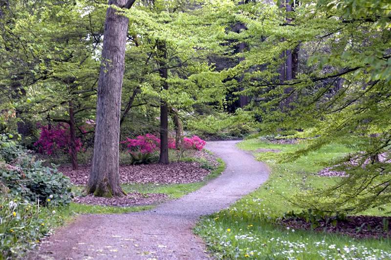 Maps Trails University Of Washington Botanic Gardens