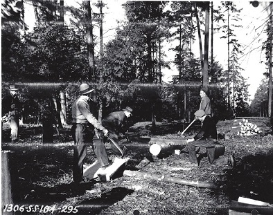 1937, WPA sawing cedar logs
