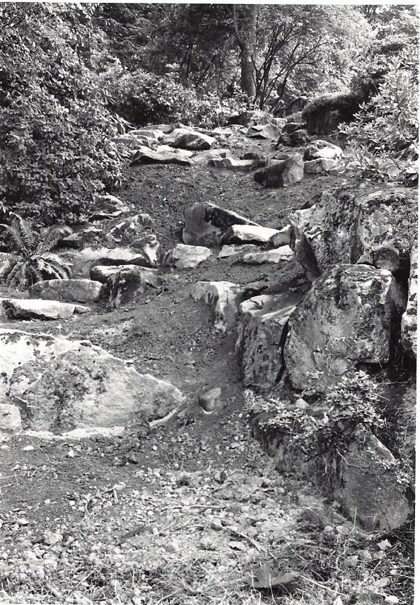 New steps down bank, 7/14/1967. Photo by B.O. Mulligan.