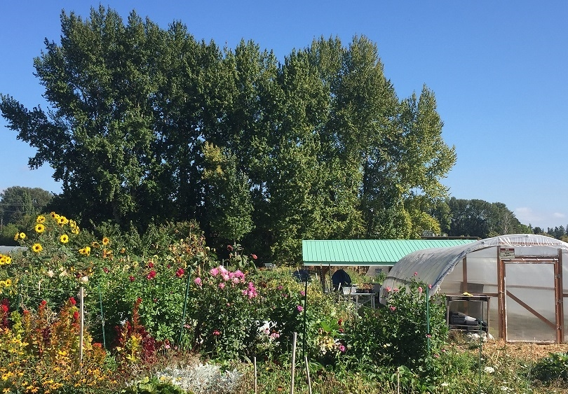 Where To Find The Farm | University of Washington Botanic