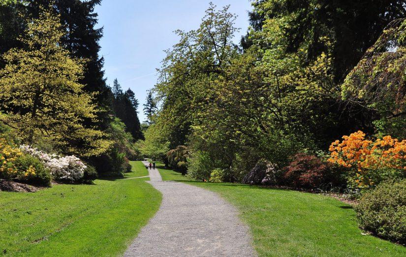 Explore Your Arboretum