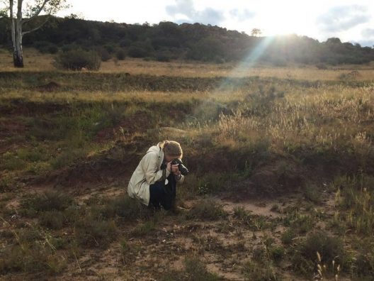 Stacy crouches down in a field dotted with grasses and bushes, taking a picture of a plant.