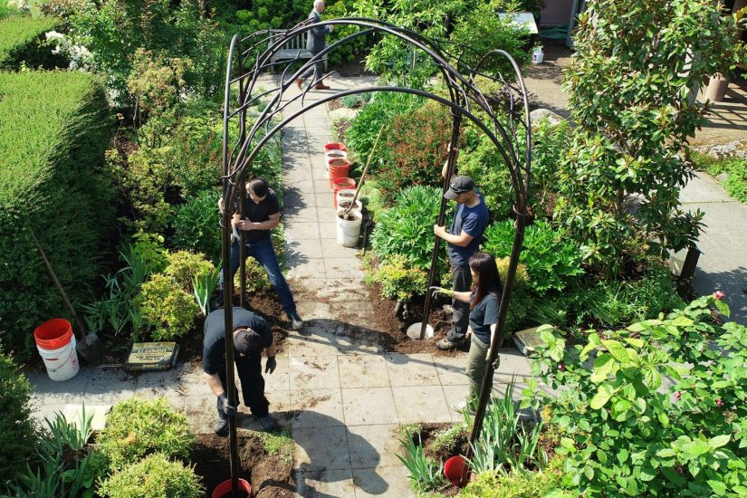 Arbor Being Installed In The Central Axis Of The Fragrance Garden. Seattle  ...