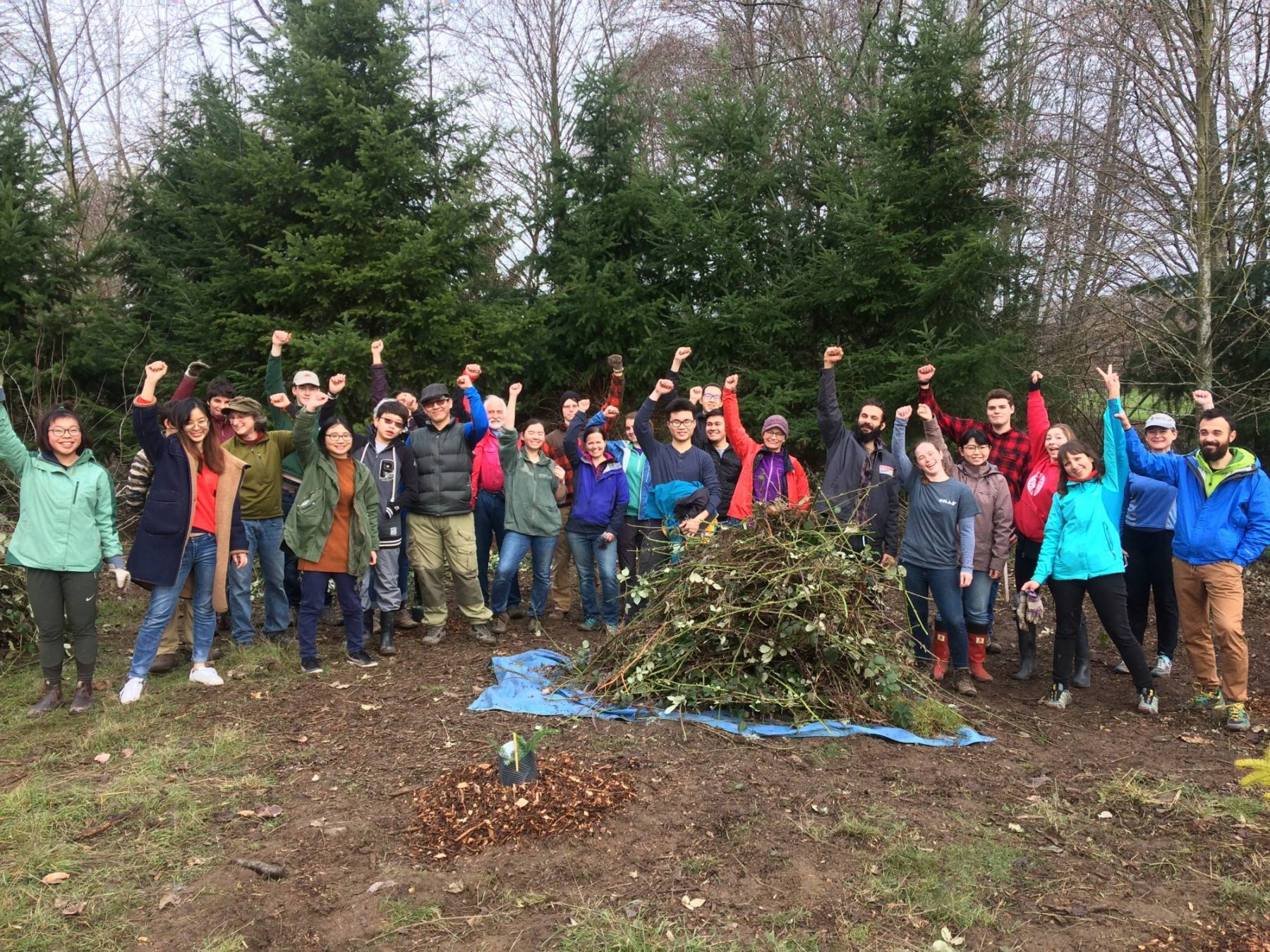 Volunteers helping out in the Union Bay Natural Area, 2019 MLK Day of Service