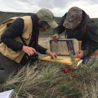 Two Rare Care volunteers pressing plants at Two-Steppe Natural Area Preserve