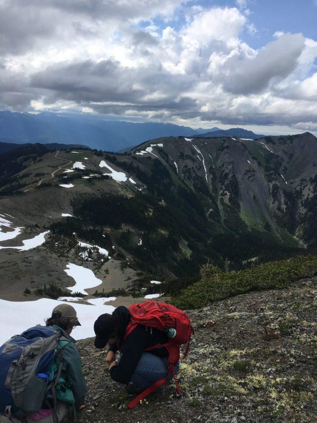 Wendy and Callie at Elk Mountain (Photo: Maya Kahn-Abrams)
