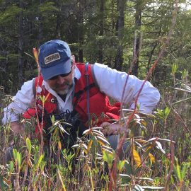 Man in blue hat and red vest crouching to look at plants in a field