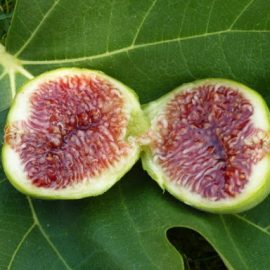 Split fig fruit with red flesh exposed, sitting on top of a fig leaf